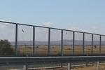 Изграждане на мрежи против птици за пътища